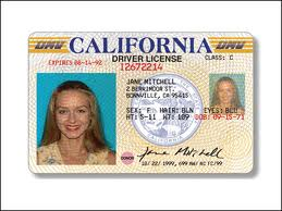 Licenses The Drivers Undocumented In For California